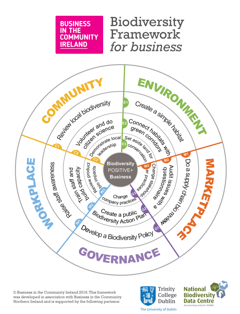 Biodiversity 'Wheel' Framework - with branding