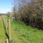 New fencing to protect the river in place