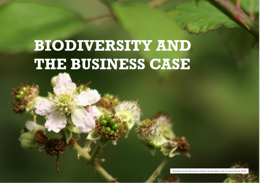 Image of white blossoms on green leafy background with texts that says biodiversity and the business case